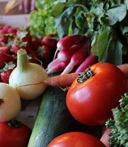 b33c8aeecf7 Livraison de paniers de fruits et légumes à Strasbourg et CUS