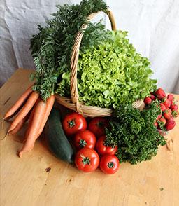 Livraison de paniers de fruits et l gumes strasbourg et cus - Panier legumes strasbourg ...